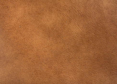 brown leather 537284406