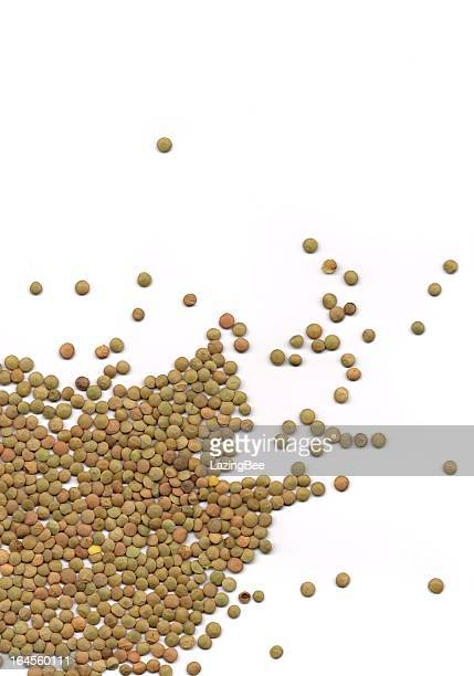 brown lentils - lentil stock pictures, royalty-free photos & images