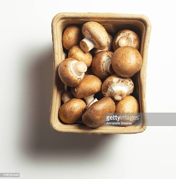 brown mushrooms - mushrooms stock photos and pictures