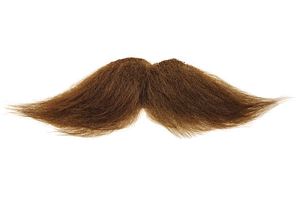 Free Mustache Images Pictures And Royalty Free Stock Photos