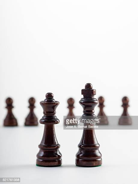 Brown or black pieces of chess in lines on a white bottom
