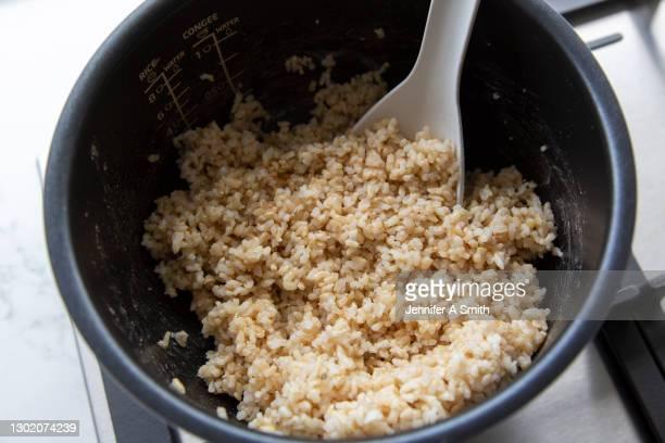 brown rice - arroz integral - fotografias e filmes do acervo