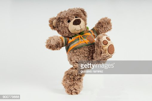 453 Cartoon Bear Photos And Premium High Res Pictures Getty Images
