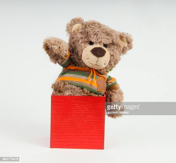 brown stuffed bear with behavior