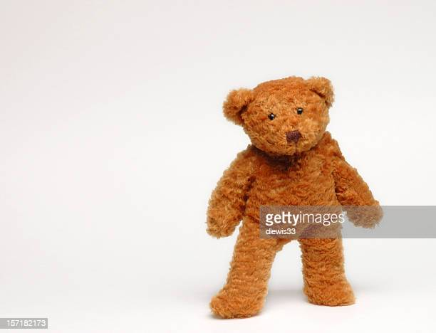 Brown teddy bear standing in white background