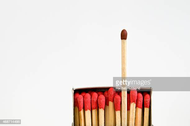 Brown tipped match standing out from red ones