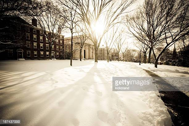brown university in winter - ivy league university stock photos and pictures