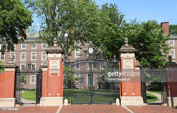 brown university - brown university stock pictures, royalty-free photos & images