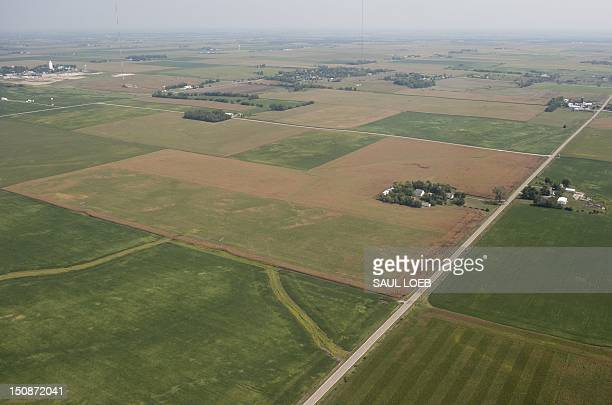 Browned farmland full of severely damaged corn stalks due to a widespread drought as seen from the air near Ames, Iowa, August 28, 2012. Record heat...