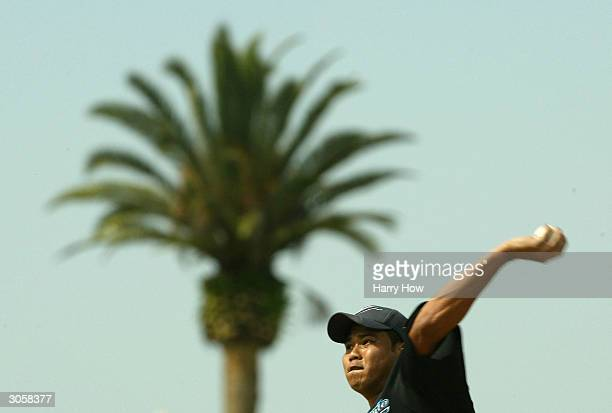 Bruce Chen of the Toronto Blue Jays pitches in front of a palm tree against the Detroit Tigers during a spring training game on March 9 2004 at Joker...