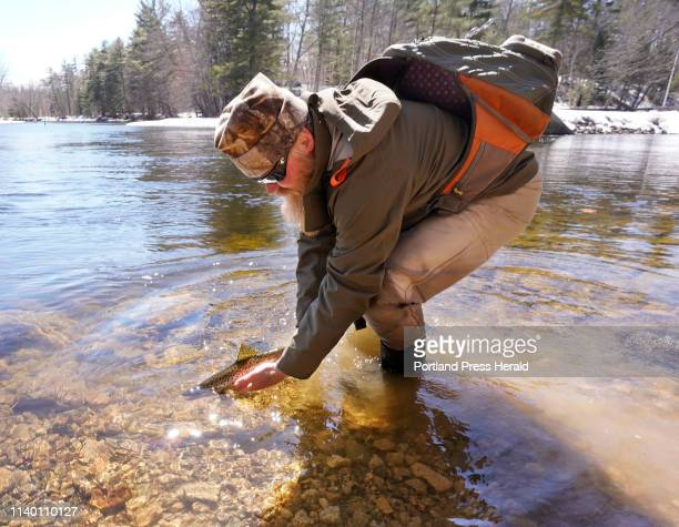 Bruce Hidell of Casco releases a salmon back into the Songo River where he was fishing on Monday, April 1, the traditional opening day of fishing...