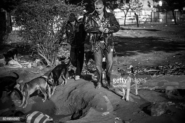 Bruce Lee who is usually surrounded by a pack of stray dogs is the leader of the drug addicted youth who gather at a park near Gara de Nord train...
