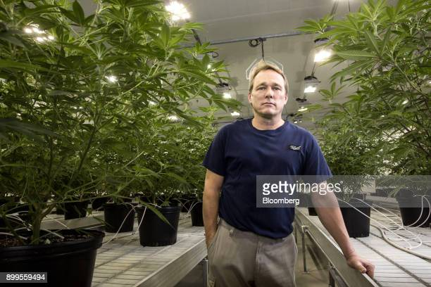 Bruce Linton chief executive officer of Canopy Growth Corp stands for a photograph in the Mother Room at the Canopy Growth Corp facility in Smith...