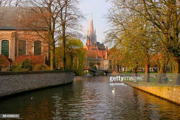 Kanaal van Brugge met zwanen en eenden - cityscape panorama oude stad gevels, middeleeuwse stad van België