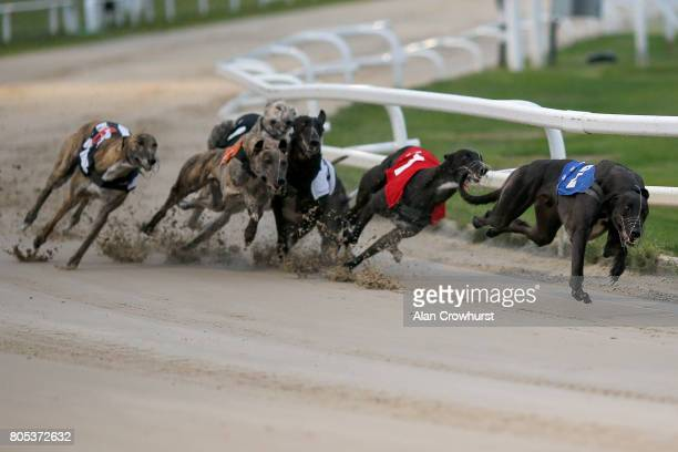 Bruisers Bullet lead at the first bend to win The Star Sports Derby Invitation at Towcester greyhound track on July 1 2017 in Towcester England