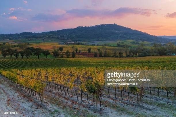 Brunello Montalcino vineyards and city in autumn at sunset