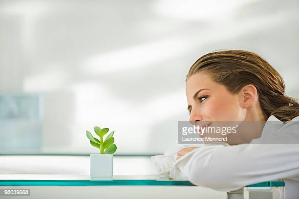 Brunette woman looking at a small cactus plant