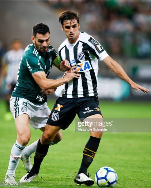 Bruno Heinrique of Palmeiras and Bryan Ruiz of Santos in action during the match for the Brasileirao Series A 2018 at Allianz Parque Stadium on...