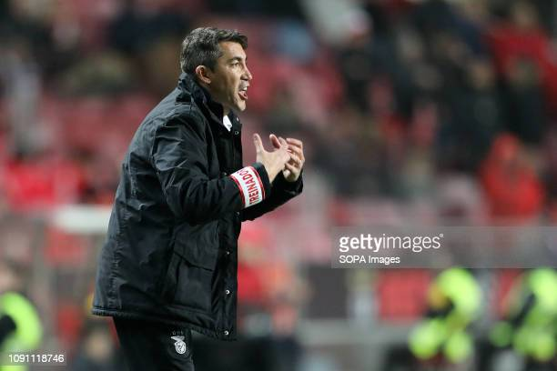 Bruno Lage Manager of SL Benfica seen in action during the League NOS 2018/19 football match between SL Benfica vs Boavista FC