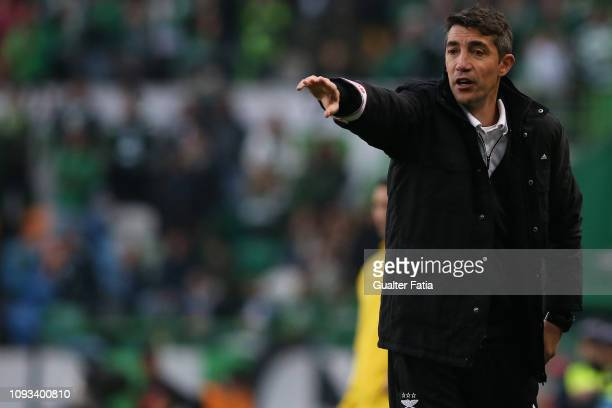 Bruno Lage of SL Benfica in action during the Liga NOS match between Sporting CP and SL Benfica at Estadio Jose Alvalade on February 3 2019 in Lisbon...
