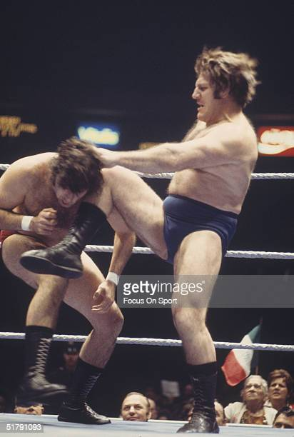 Bruno Sammartino a professional wrestler knees his opponent. Sammartino held the World Wrestling Federation Championship for more than twelve years...