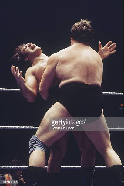 Bruno Sammartino a professional wrestler takes a hit in the ring. Sammartino held the World Wrestling Federation Championship for more than twelve...