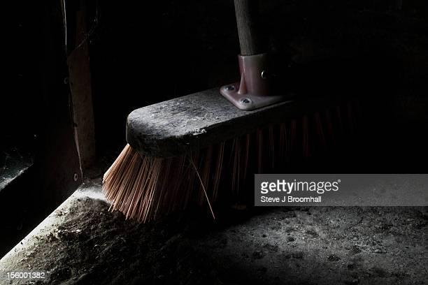 Brush in Garage