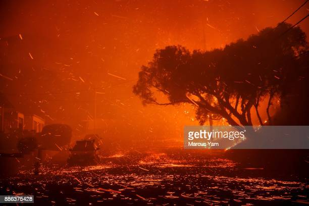 A brushfire moving with the wind sends embers all over the place in residential neighborhoods north of on December 5 2017 in Ventura California