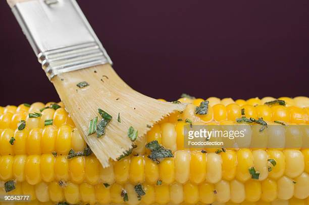Brushing corn on the cob with herb butter, close up