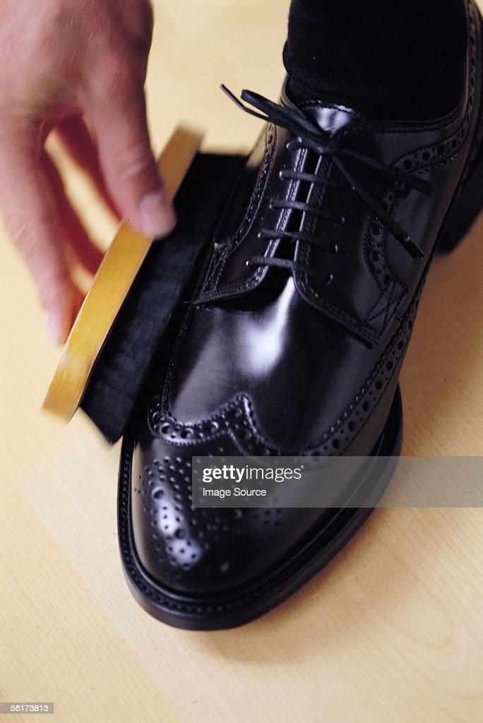 Brushing shoe : Stock Photo