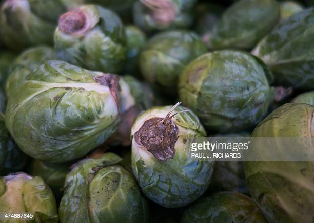 Brussel Sprouts for sale are seen at the Eastern Market February 25 in Washington DC AFP PHOTO/Paul J Richards