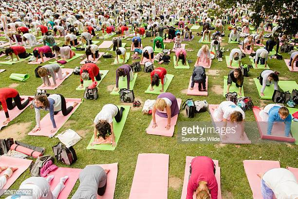 Brussels Belgium 21 June 2015 Brussels Yoga day in the Terkameren park was organized in Brussels to have thousands of yoga enthousiast work out...