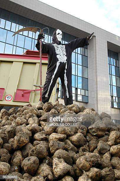 A person dressed as the Grim Reaper stands on a pile of sugar beets as sugarbeet farmers and sugar refinery employees demonstrate 22 Novenber 2005 in...