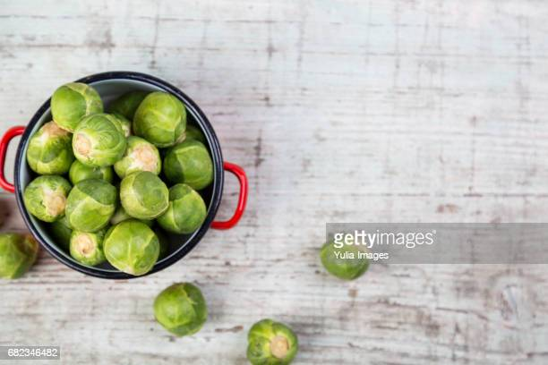 brussels sprout in small pot - crucifers stock pictures, royalty-free photos & images