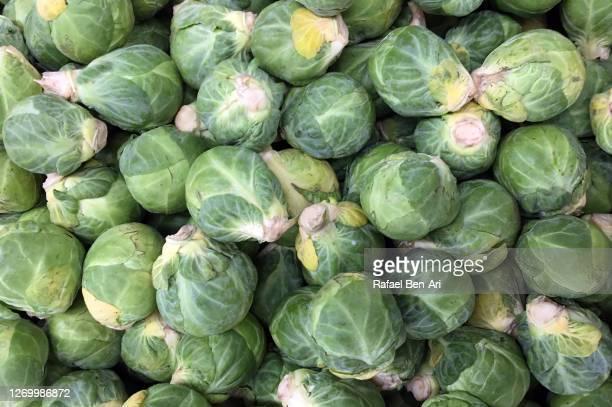 brussels sprout on display in market - rafael ben ari foto e immagini stock