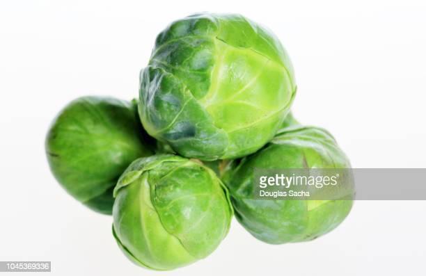 brussels sprout vegetables (brassica oleracea) - 芽キャベツ ストックフォトと画像