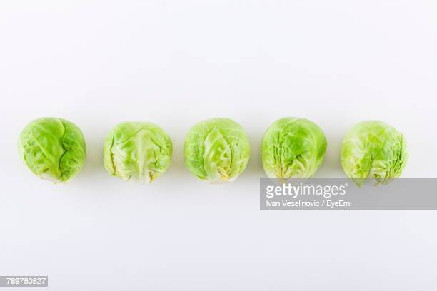 brussels sprouts against white background - cabbage family stock photos and pictures