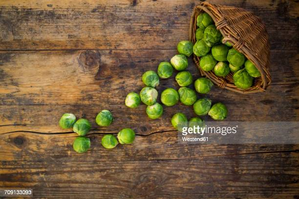 Brussels sprouts and wickerbasket on dark wood