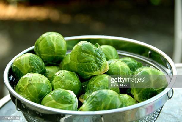Choux de Bruxelles, à une alimentation saine, des légumes dans Colander