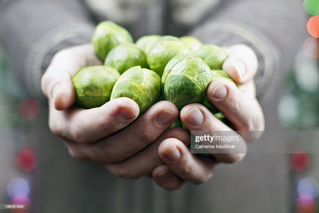 Brussels sprouts : Stock Photo