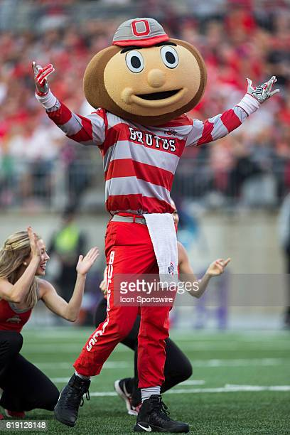 Brutus the Buckeye shows his support for his team during an NCAA football game between the Northwestern Wildcats and the Ohio State Buckeyes on...