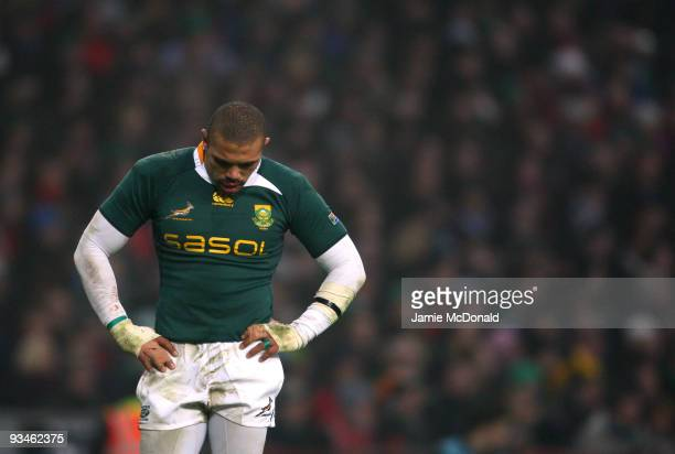 Bryan Habana of South Africa looks dejected during the Guinness Series 2009 match between Ireland and South Africa at Croke Park on November 28 2009...