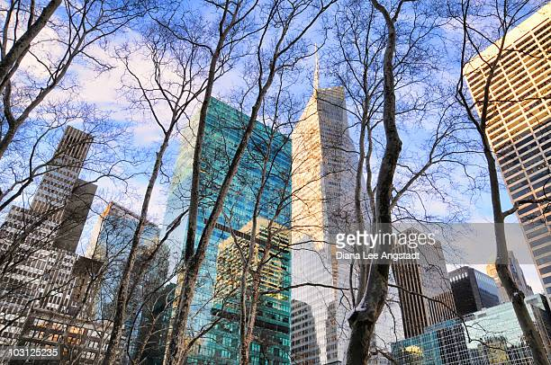 bryant park tree tops - bryant park stock pictures, royalty-free photos & images