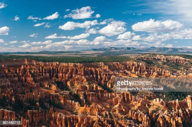bryce canyon in afternoon light - bryce canyon - fotografias e filmes do acervo