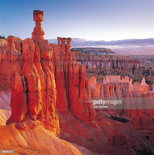 bryce canyon national park - bryce canyon stock pictures, royalty-free photos & images
