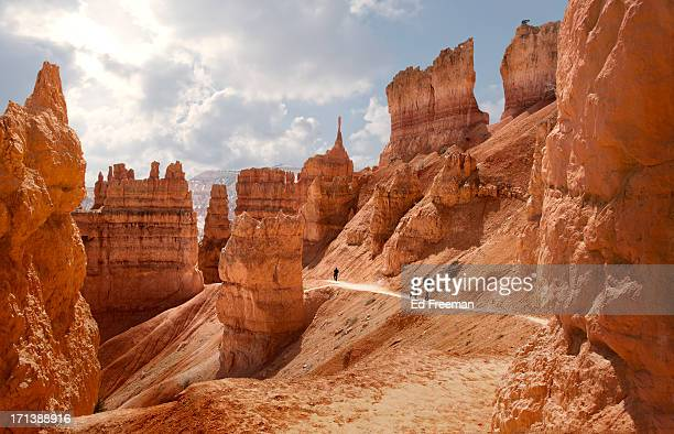 bryce canyon, navajo loop trail - bryce canyon stock pictures, royalty-free photos & images