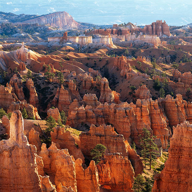 Bryce Canyon overlook at sunrise