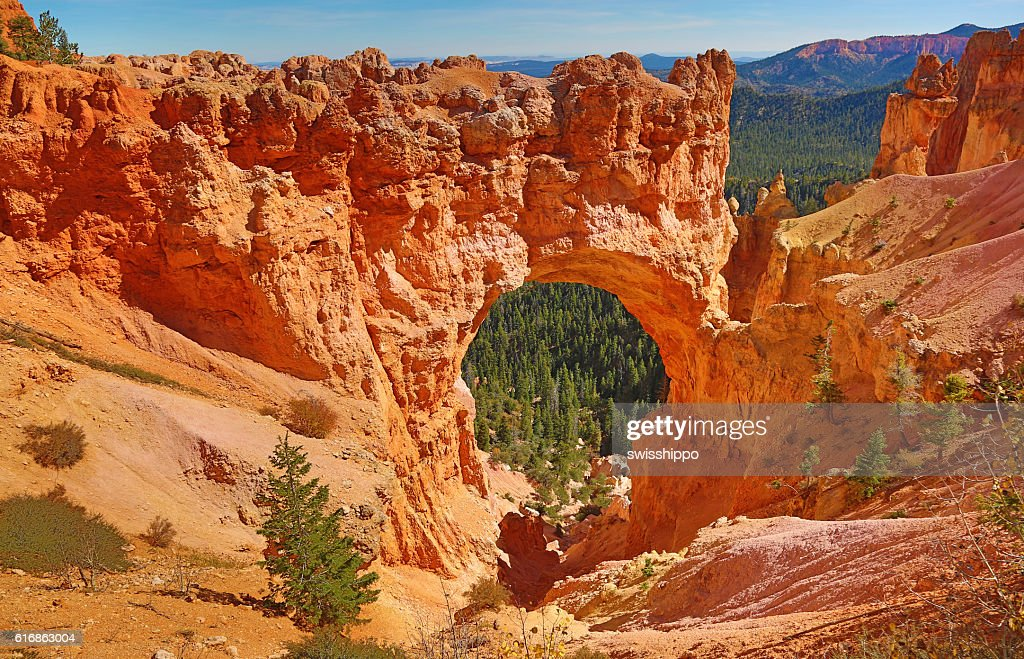 Bryce canyon : Stock Photo