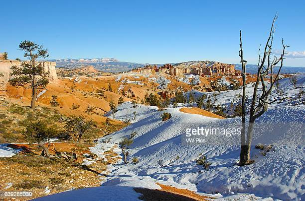 Bryce Canyon Rim in Winter Sinking Ship Mesa and Bristlecone Point from Sunrise Point Bryce Canyon National Park Utah