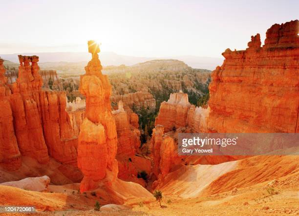 bryce canyon sunrise - rock hoodoo stock pictures, royalty-free photos & images